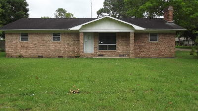 Iberia Parish Single Family Home For Sale: 219 Terry Michael