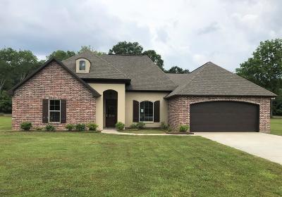 Breaux Bridge Single Family Home For Sale: 1037 Gloria Kern Drive