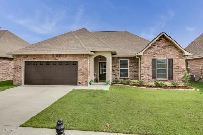 Meadow Bend Single Family Home For Sale: 123 Sapphire Springs Road