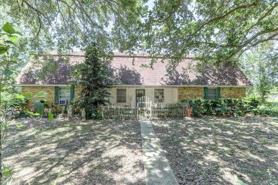 Carencro Single Family Home For Sale: 425 Pope Drive