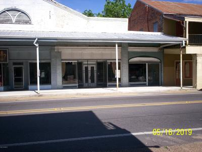 Commercial For Sale: 214 & 216 S Main Street