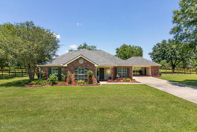 Youngsville Single Family Home For Sale: 410 Copperfield Way