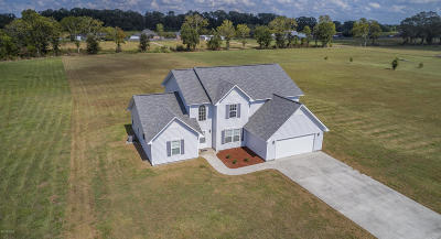 Breaux Bridge Single Family Home For Sale: 1050 Girl Scout Road