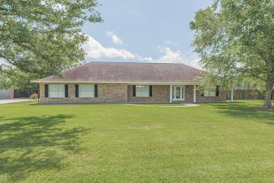 Opelousas Single Family Home For Sale: 209 Meghan Drive