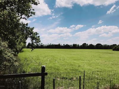 Acadia Parish Farm For Sale: Tbd Albert Venable Rd (Track 1&2)