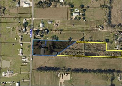 Carencro Farm For Sale: 152 Hwy 93