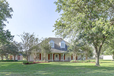 New Iberia Single Family Home For Sale: 400 Landview Drive