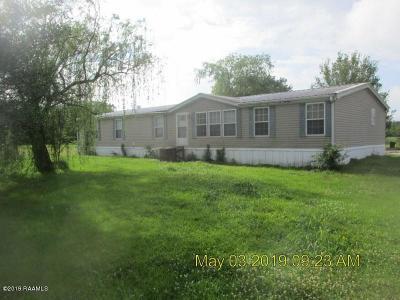 Iberia Parish Single Family Home For Sale: 6708 Rosemary Road