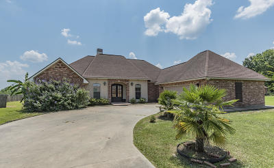 Opelousas Single Family Home For Sale: 137 Braeden Boulevard