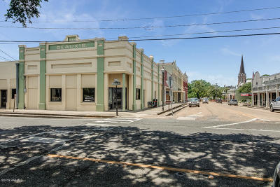 Commercial For Sale: 100 S State Street