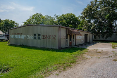St Martin Parish Commercial For Sale: 702 Parkway Drive