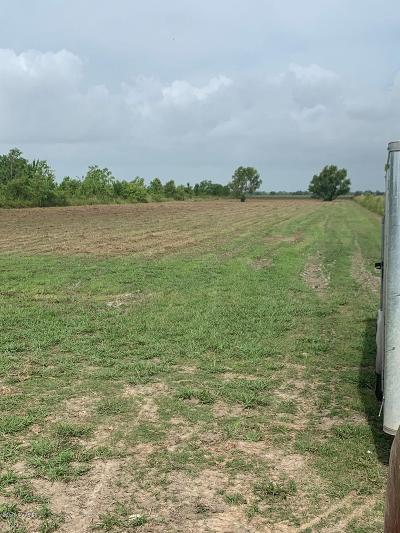 Farm For Sale: 115 Anissa Drive