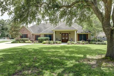 Single Family Home For Sale: 128 Wills Drive
