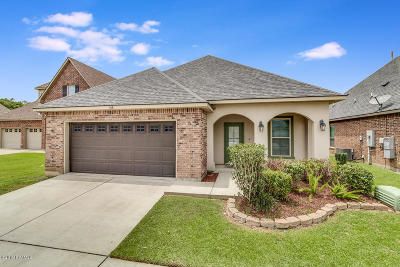 Single Family Home For Sale: 106 Shady Ridge Lane