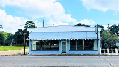 Jefferson Davis Parish Commercial For Sale: 644 N Main Street
