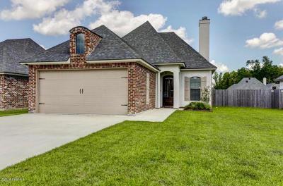 Single Family Home For Sale: 105 Sleepy Brook Road