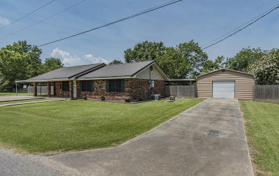 Single Family Home For Sale: 175 Jill Drive