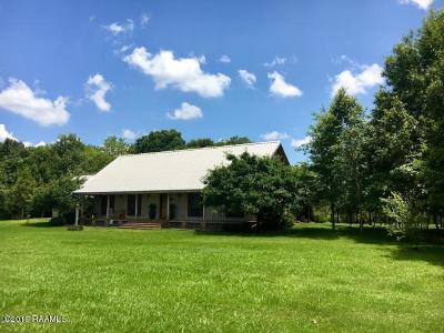 St Landry Parish Commercial For Sale: 1174 Hwy 356