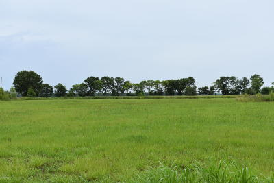 Iberia Parish Residential Lots & Land For Sale: 916 Teche Lake Road