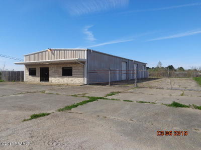 Iberia Parish Commercial For Sale: 2507 Hulin Road
