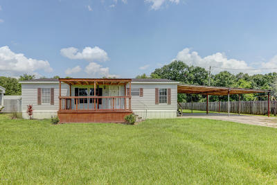 Franklin Single Family Home For Sale: 133 Cane Road