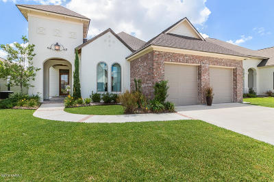 Single Family Home For Sale: 311 Cypress View Drive