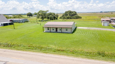 Abbeville Single Family Home For Sale: 17601 W. La Hwy 335