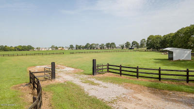 Youngsville Farm For Sale: 4920 Decon Road