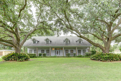 Single Family Home For Sale: 228 Ramblewood Drive