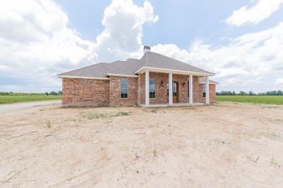 Single Family Home For Sale: 6328 Ellis Road
