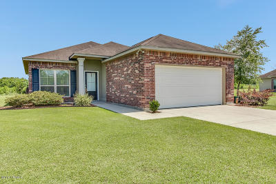 Single Family Home For Sale: 1042 Bridgetowne Lane