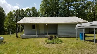 Single Family Home For Sale: 176 River Lane