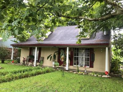 Single Family Home For Sale: 100 Pamela Drive