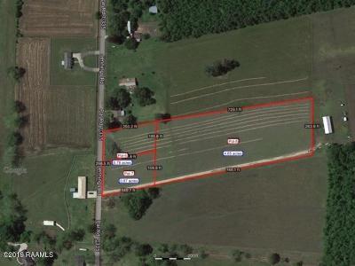 Opelousas Farm For Sale: Lot 4 Jennings Road