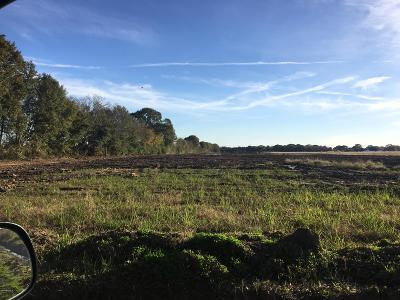Youngsville Residential Lots & Land For Sale: 541 Langlinais Road