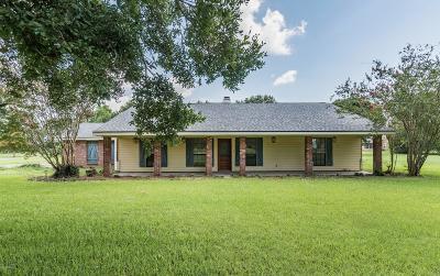 Duson Single Family Home For Sale: 110 Saul Drive