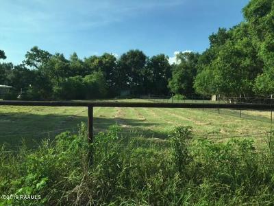Iberia Parish Residential Lots & Land For Sale: 1215 Jules Road
