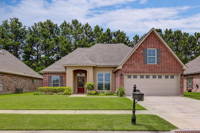 Meadow Bend Single Family Home For Sale: 207 Woodhaven Road