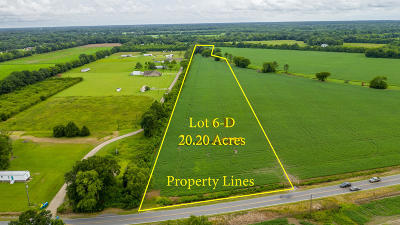 Farm For Sale: Tbd Declouet Hwy
