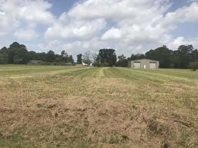 Carencro Residential Lots & Land For Sale: 701 & 635 Patin Road