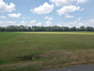 St Martin Parish Residential Lots & Land For Sale: 1029 Mitt Naquin Road