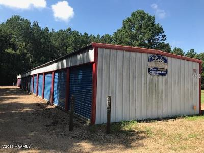 Commercial For Sale: 1434 Basile Eunice Hwy