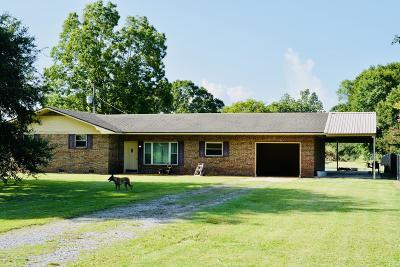 Arnaudville Single Family Home For Sale: 2676 Oscar Rivette Rd Road
