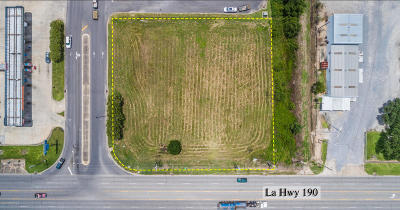 Evangeline Parish Residential Lots & Land For Sale: 1538 Us Hwy 190