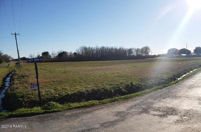 Acadia Parish Residential Lots & Land For Sale: 1 Meche Road