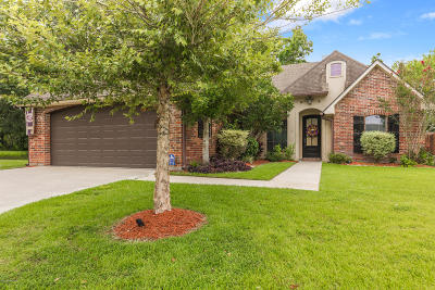 Youngsville Single Family Home For Sale: 213 Cedar Grove Drive Drive