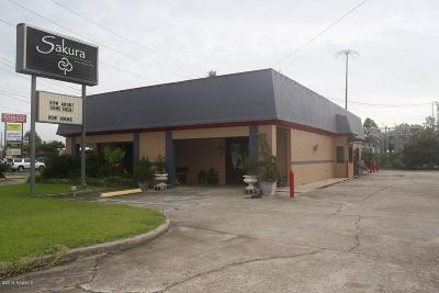 Lafayette Commercial For Sale: 3217 Johnston Street