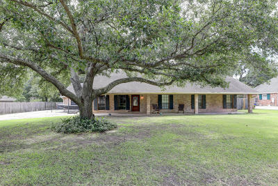 Iberia Parish Single Family Home For Sale: 104 Higdon Street