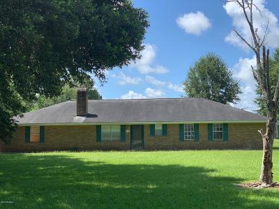 Single Family Home For Sale: 325 Berdine Street