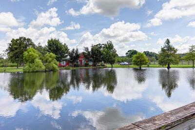 Arnaudville Single Family Home For Sale: 6961 La-93